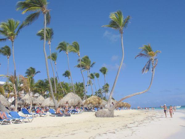 Punta Cana - Février 2013 (39)