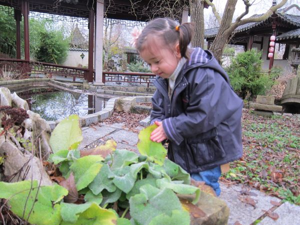 Cl mentine au jardin chinois d 39 yili vadrouillons for Le jardin yili