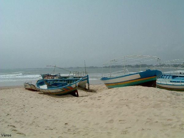 tunisie-6.jpg