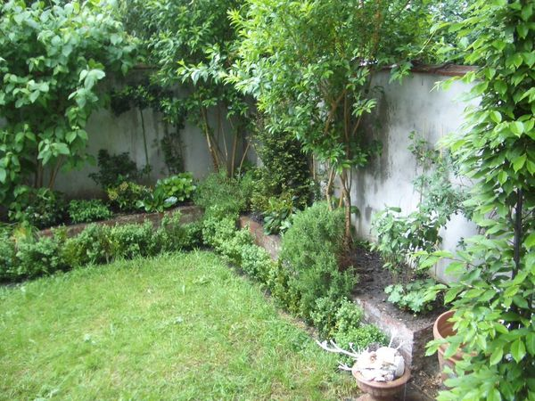 Amenager un petit jardin le blog de adeline for Amenagement jardin guadeloupe
