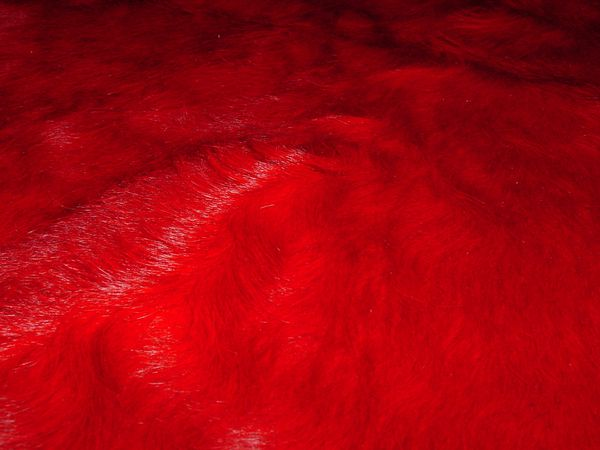 peau vache rouge detail