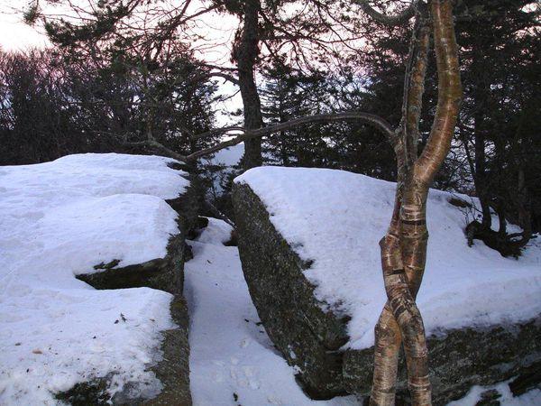 Taennchel rocher des géants et lever de lune (5)