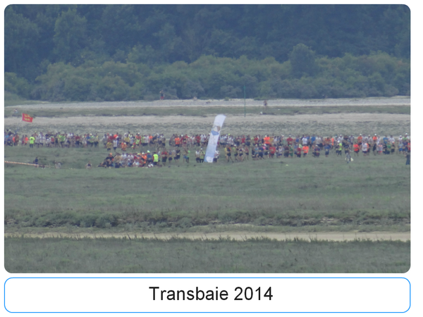 Transbaie-2014--1-.png