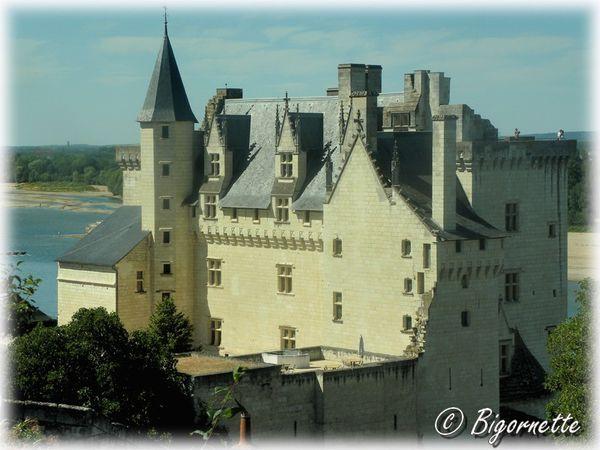 journée blogueur Parnay et Montsoreau 209
