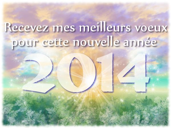 nouvel-an-2014.jpg