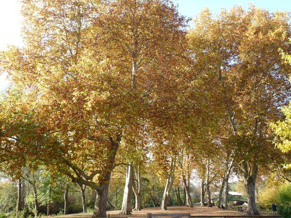oct-2011-034.jpg