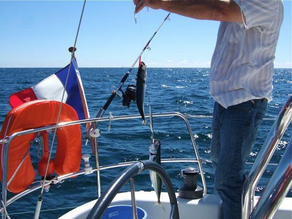 La pêche 1