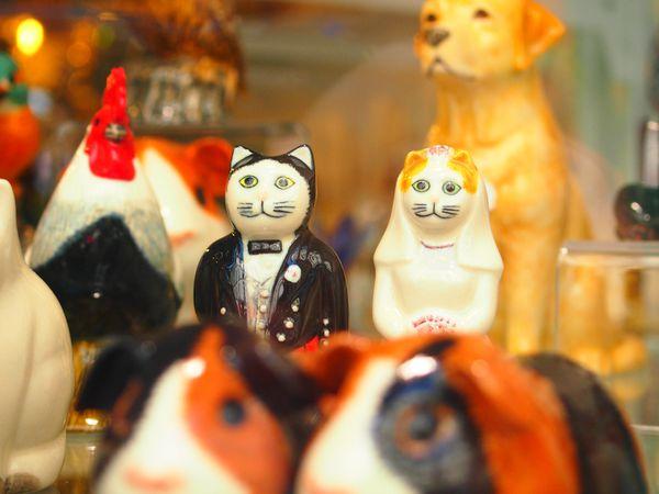les-chats-maries-en-porcelaine.JPG