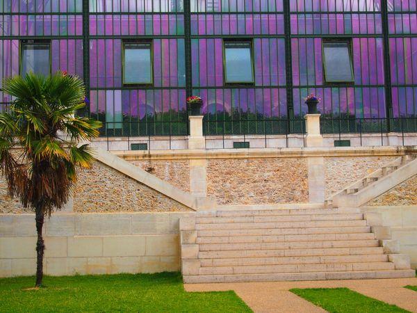 le-jardin-des-plantes-5-aout-2012-copie-1.JPG