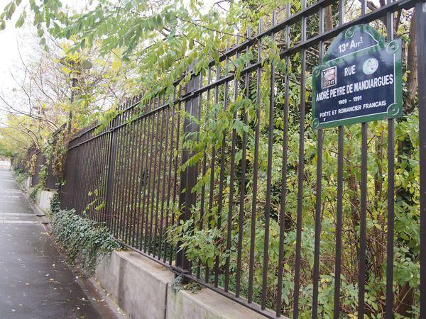 Paris-13e-Rue-Andre-Pieyre-de-Mandiargues--2.JPG