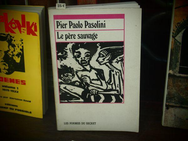 Pasolini-Le-pere-sauvage.JPG