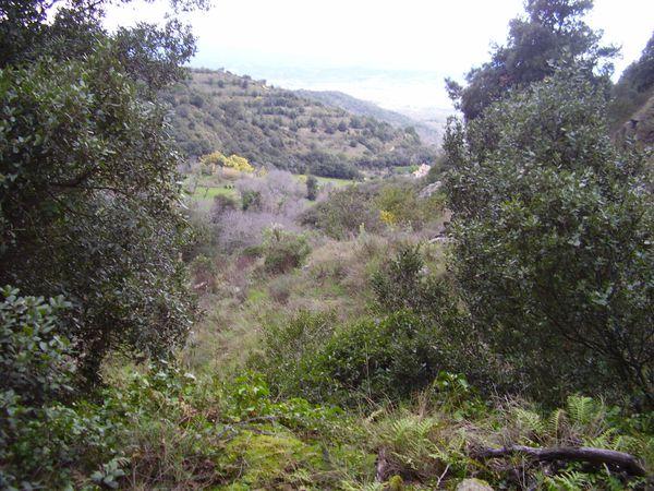 24-mars-rando-villelongue-del-monts-054-copie-1.jpg
