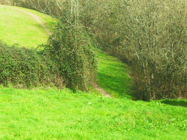 penfeld mars 2012 (4)