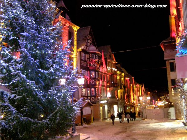 Saverne illumination de noël (8)