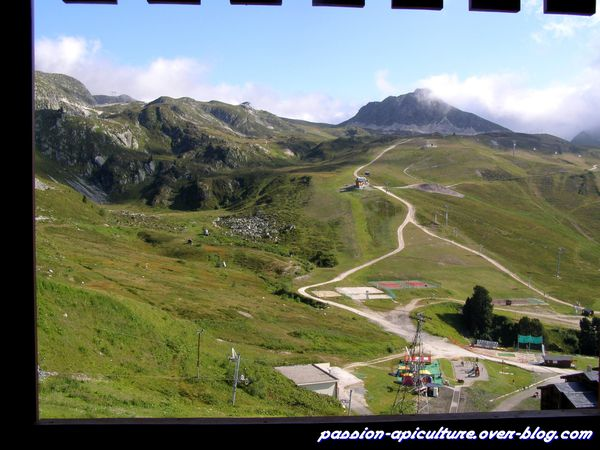 Appartement Belle Plagne (1)
