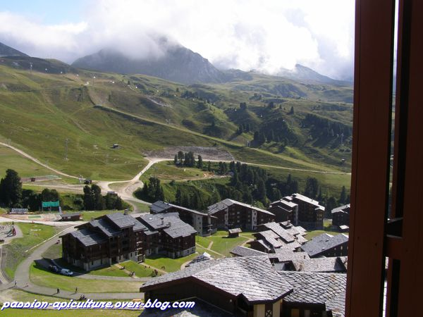 Appartement Belle Plagne (3)