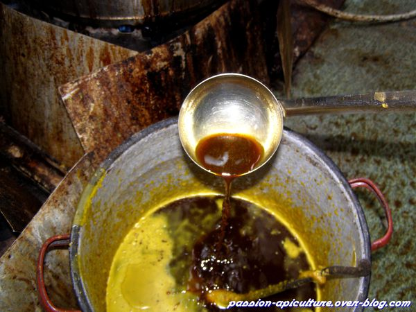 Cire d'abeilles liquide (1)