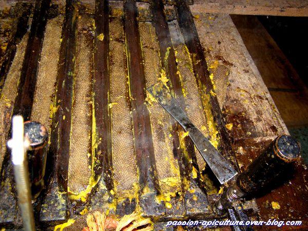 Cire d'abeilles liquide (3)