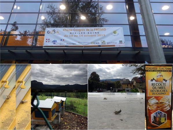 miel toxique congrès FNOSAD ville Aix les Bains