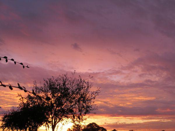 L 39 automne et ses couleurs le blog de harmonia pour un monde meilleur - L automne et ses couleurs ...