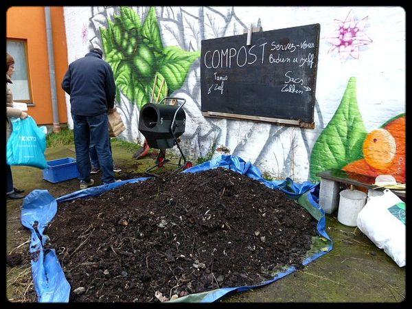 que_faire_bruxelles_gratuit_ecologie_plantes