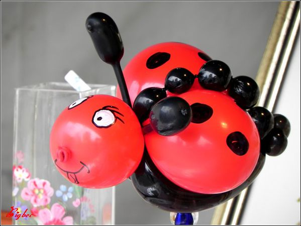 Coccinelle ballons