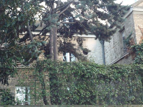 Pavillon dans un jardinet, mur couvert de lierre, rue du Lo
