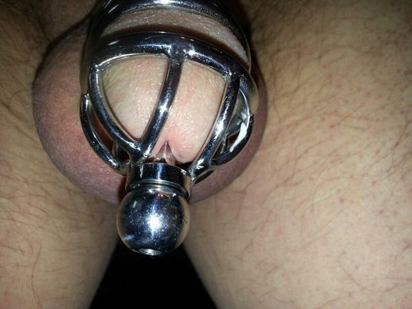 Chastity Cock Cage Métal 2-027