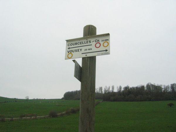 Sortie-Coucelles-sous-Chatenois-21042013 8526