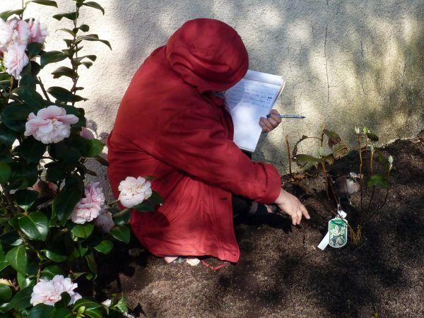 Aide jardinier Noé 01