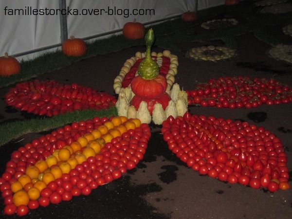 JO 2012 fleur tomates