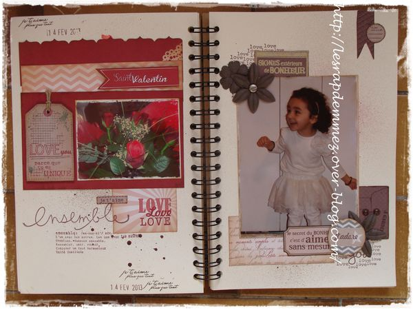 005family diary