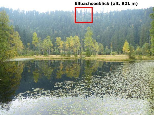 Ellbachsee 086