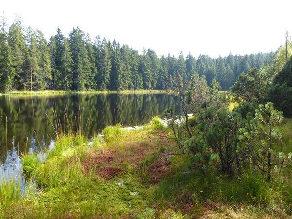 Herrenwieser See 140