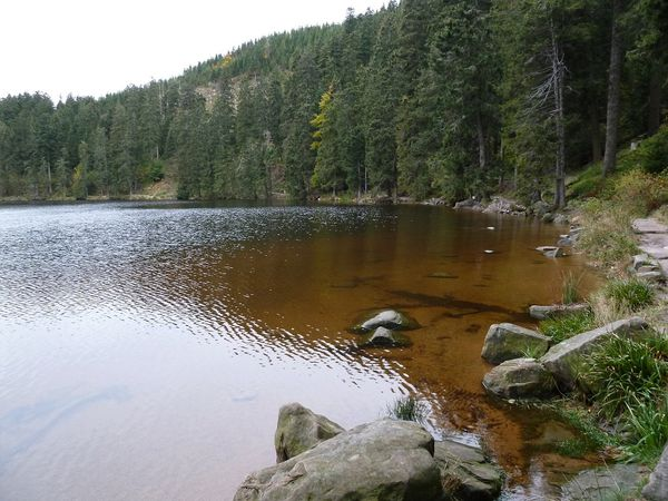 Lac glaciaire Mummelsee 1