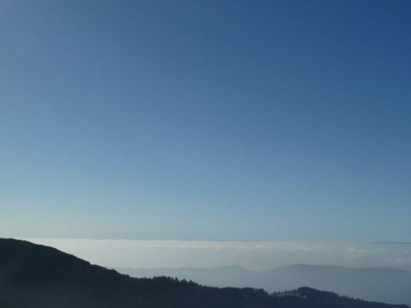 Nebelmeer Seekopf 1