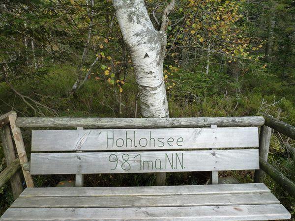 Hohloh 028