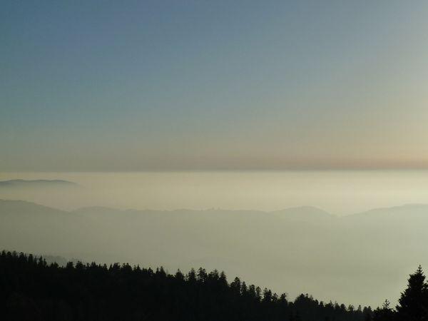 Altsteigerskopf Nebelmeer 2
