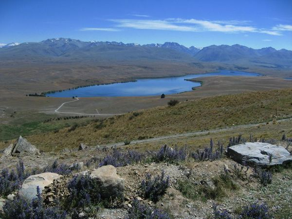 Lac-Tekapo-et-Mount-Cook 5874