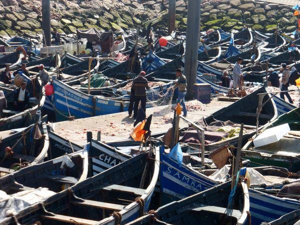 4-03 Agadir port de pêche 4 w