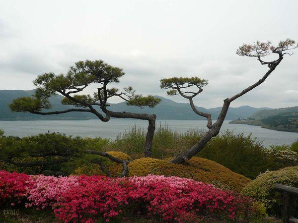 199_Hakone--7-a.jpg