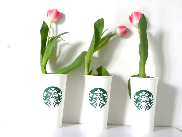 recyclage gobelets starbucks coffee
