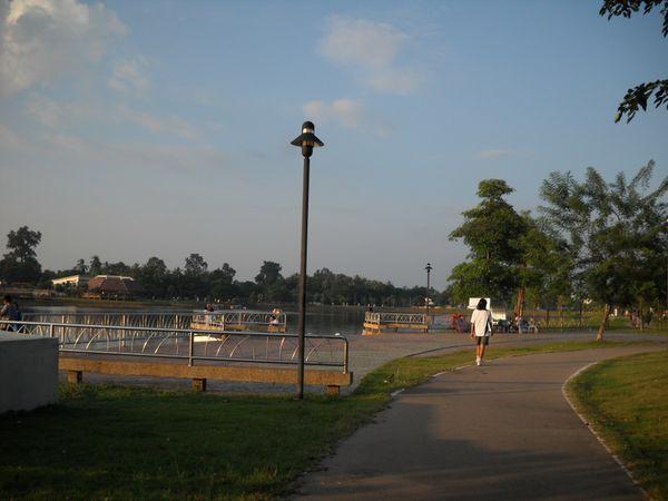 nongbua (2)