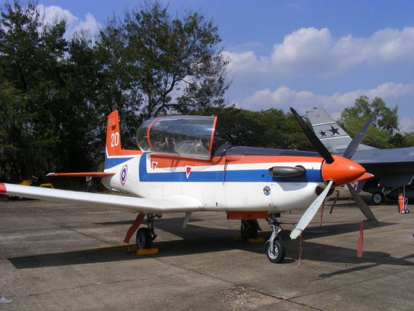 wing23 (3)