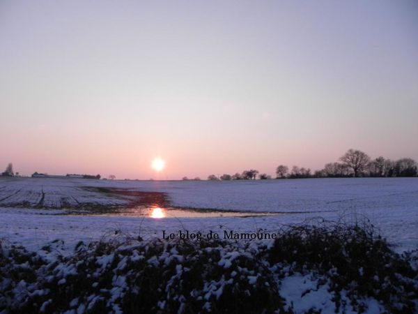 paysage hiver 2012-1