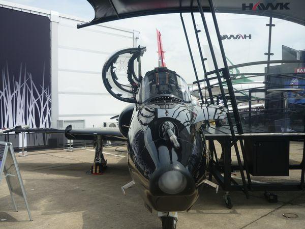 Hawk-T2.JPG