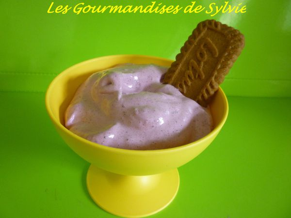Mousse de Myrtilles tm31 1