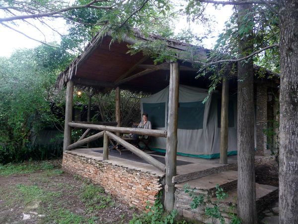 Tente Fig Tree camp