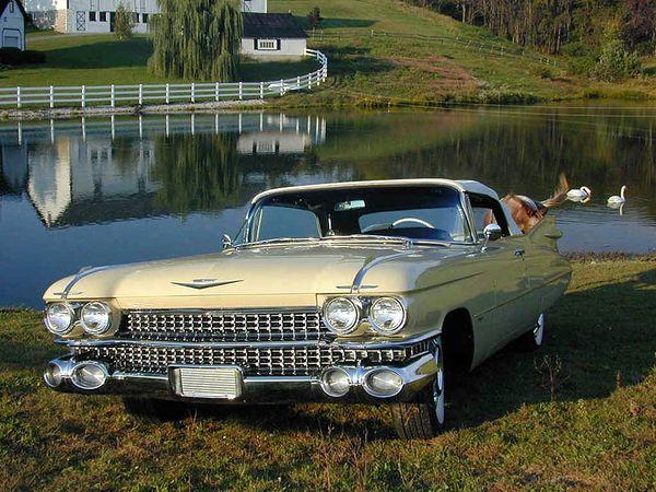 cadillac_series_6200_convertible_coupe_1959_09.jpg