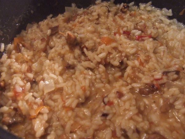 risottot petits légumes et viande (8)
